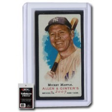 Pack of 10 BCW Tobacco Card Size Toploaders And Sleeves